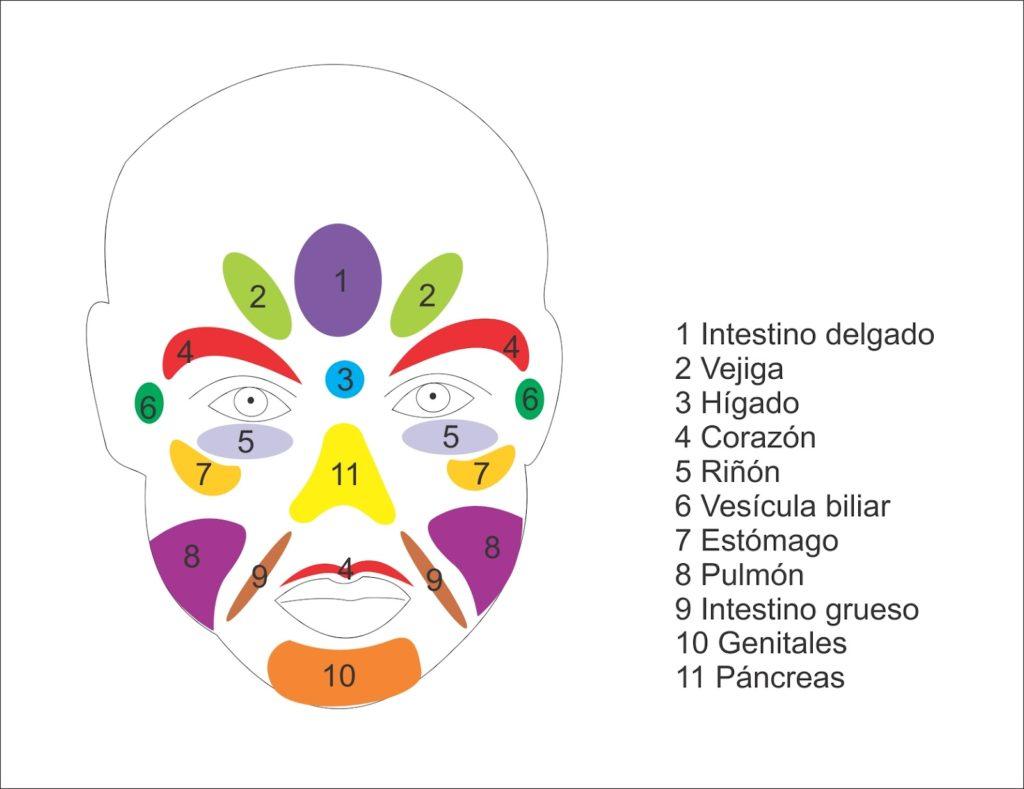 reflexología facial puntos del rostro